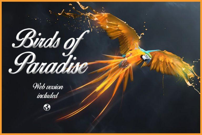 birds-of-paradise-download-0.jpg download