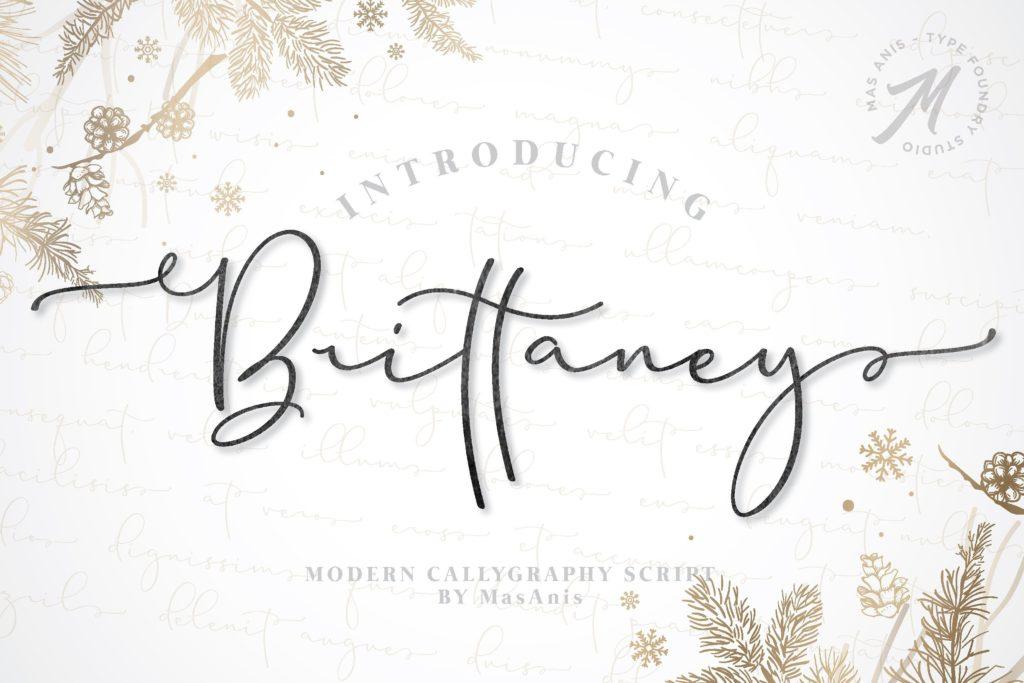 brittaney-script-font-download-0.jpg download