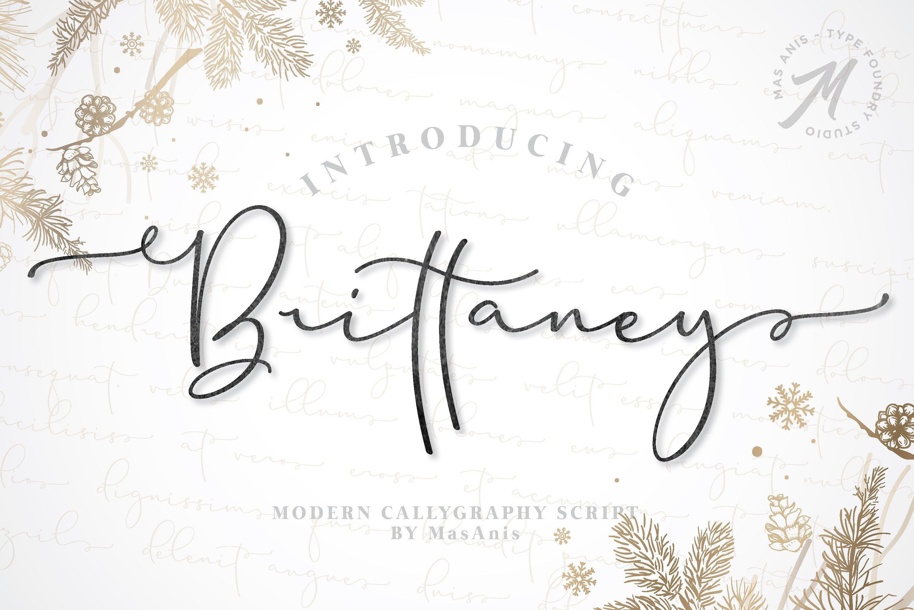 https://fontclarity.com/wp-content/uploads/2019/09/brittaney-script-font-download-0.jpg Free Download
