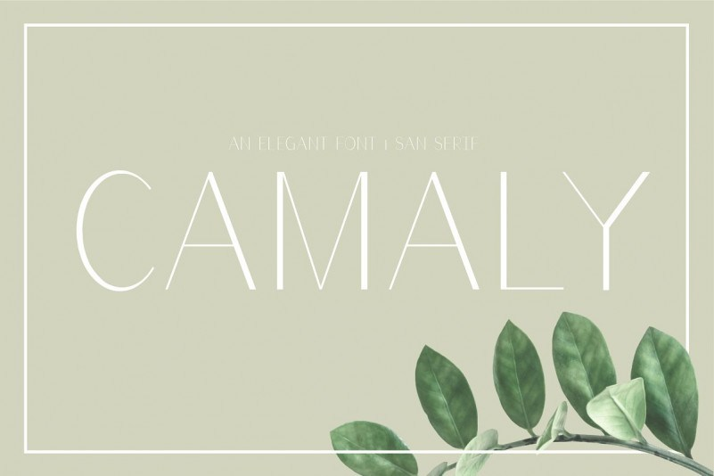 https://fontclarity.com/wp-content/uploads/2019/09/camaly-sans-serif-font-download-0.jpg Free Download