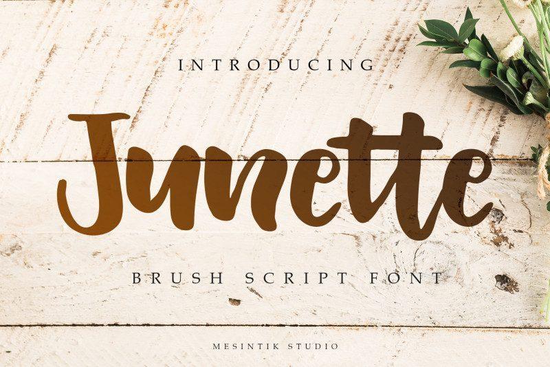 junette-script-font-download-0.jpg download