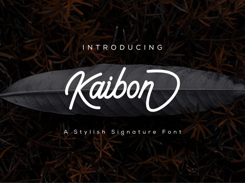 https://fontclarity.com/wp-content/uploads/2019/09/kaibon-signature-font-download-0.jpg Free Download