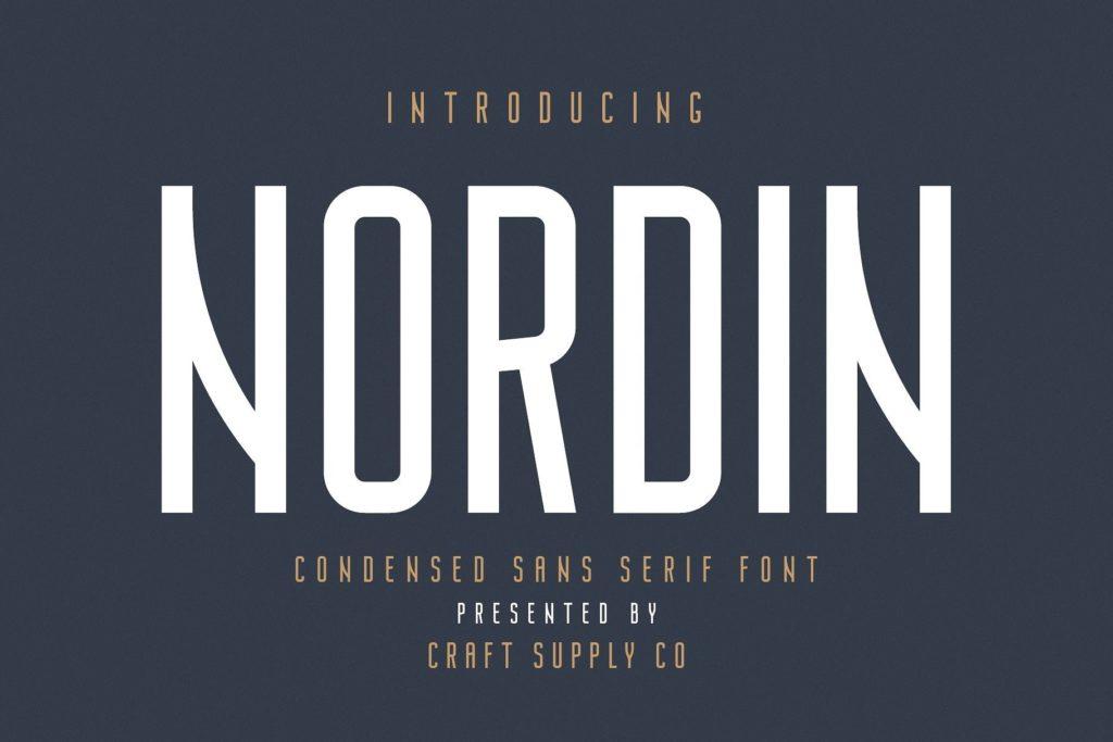 nordin-sans-serif-font-download-0.jpg download