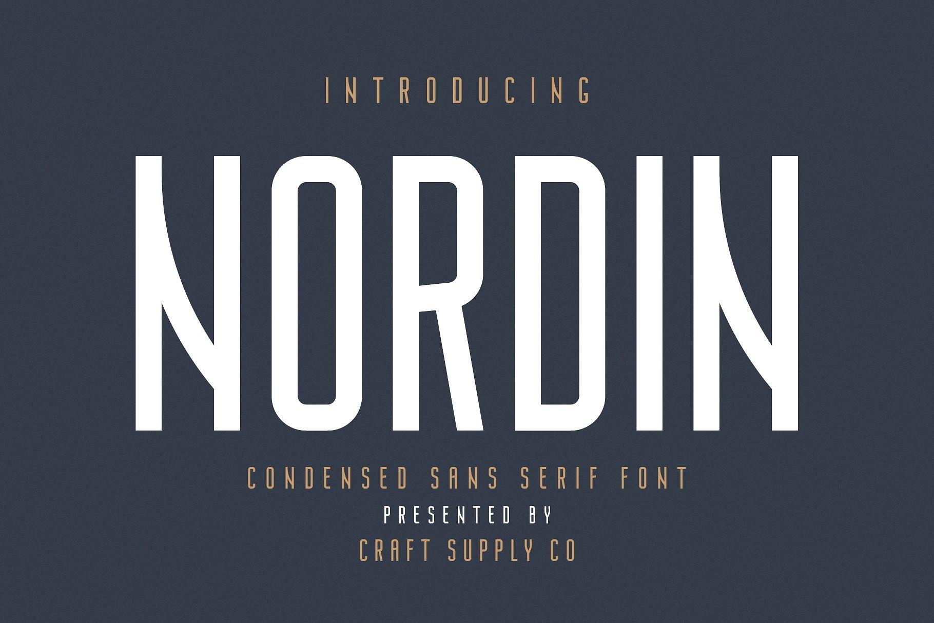 https://fontclarity.com/wp-content/uploads/2019/09/nordin-sans-serif-font-download-0.jpg Free Download