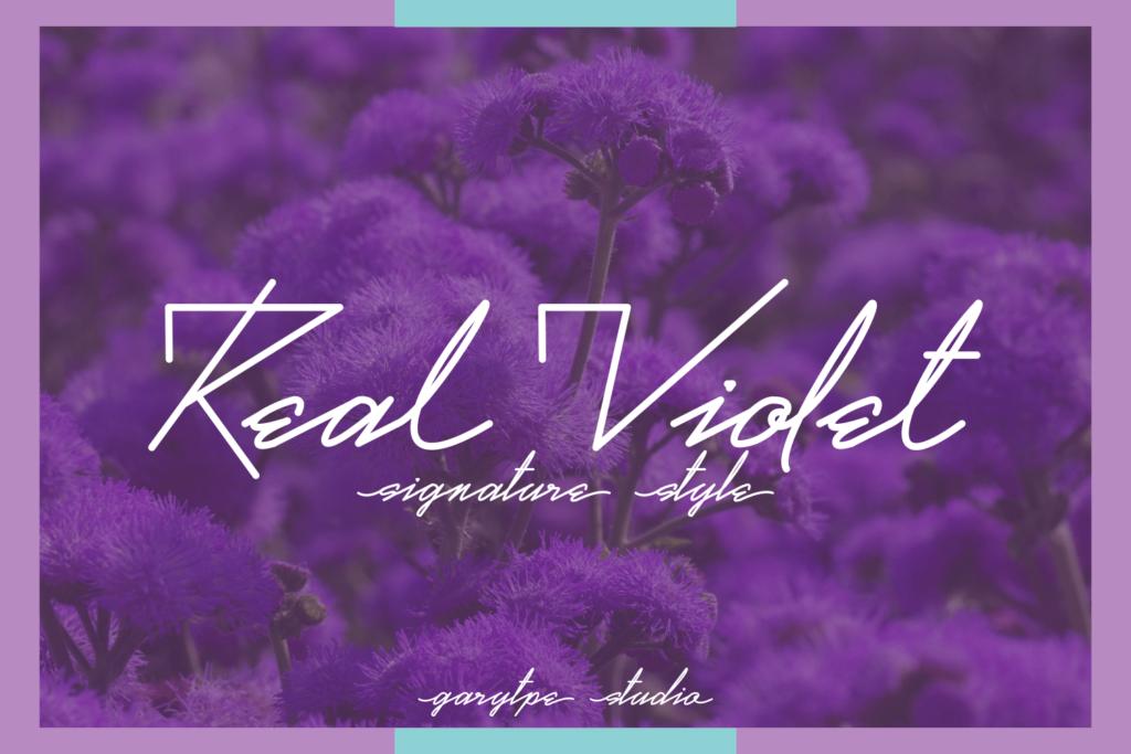 real-violet-script-font-download-0.jpg download