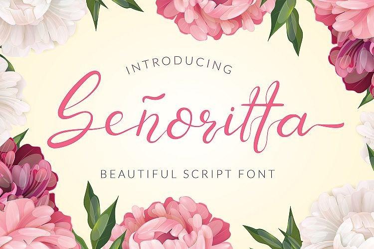 senoritta-script-font-download-0.jpg download