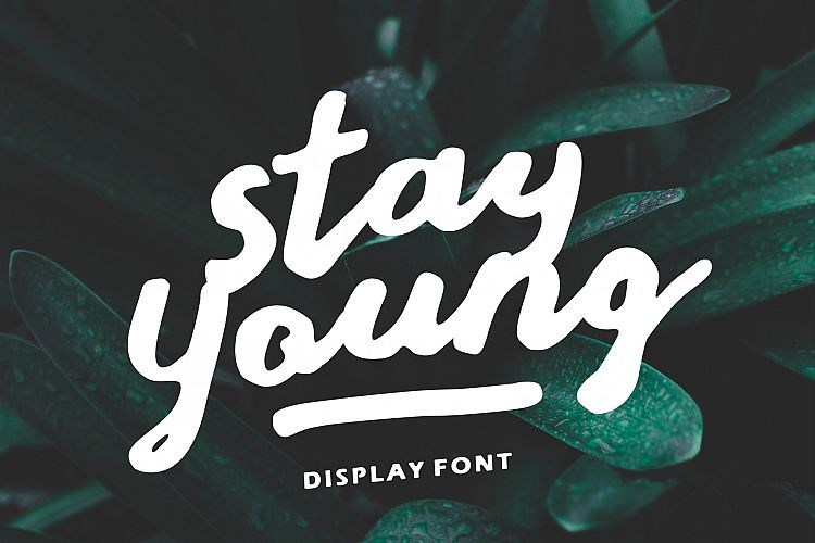 stay-young-script-font-download-0.jpg download