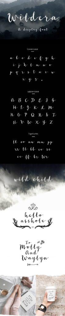 wildera-script-download-0.jpg download