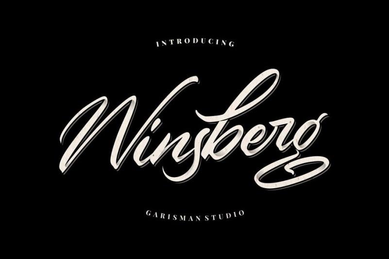 winsberg-script-font-download-0.jpg download